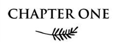 Chapter One Ltd